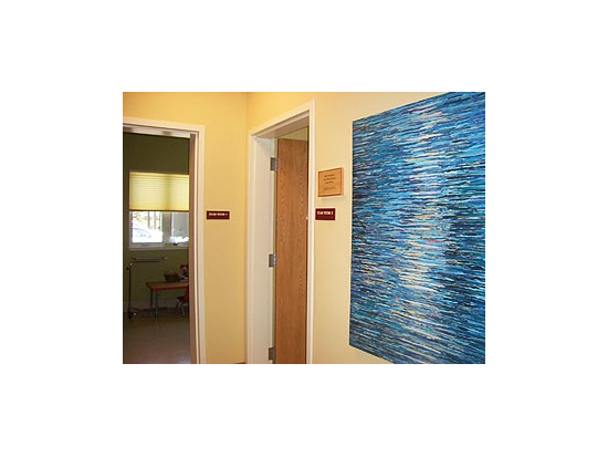 Exam Room Corridor / Local Artists' Artwork