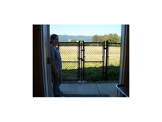 Heli-Pad Trauma Gate